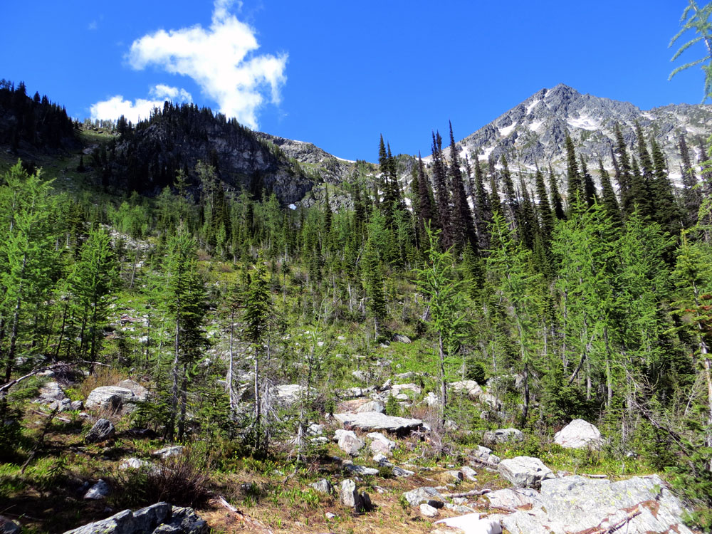 Haystack Mountain from Trail